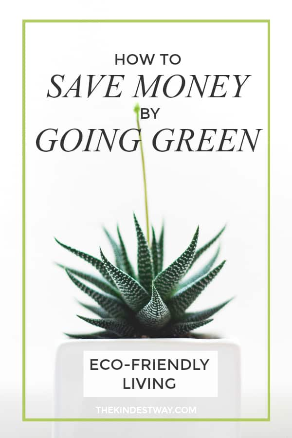 How to Save Money by Going Green. Eco-Friendly Living | Saving Money | Frugal Living | Sustainable Living | Money Saving Hacks #money #eco #sustainability #green