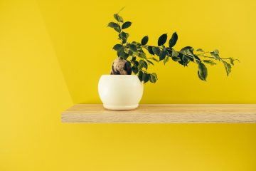 10 Tricks To Decorate Your Home For Less