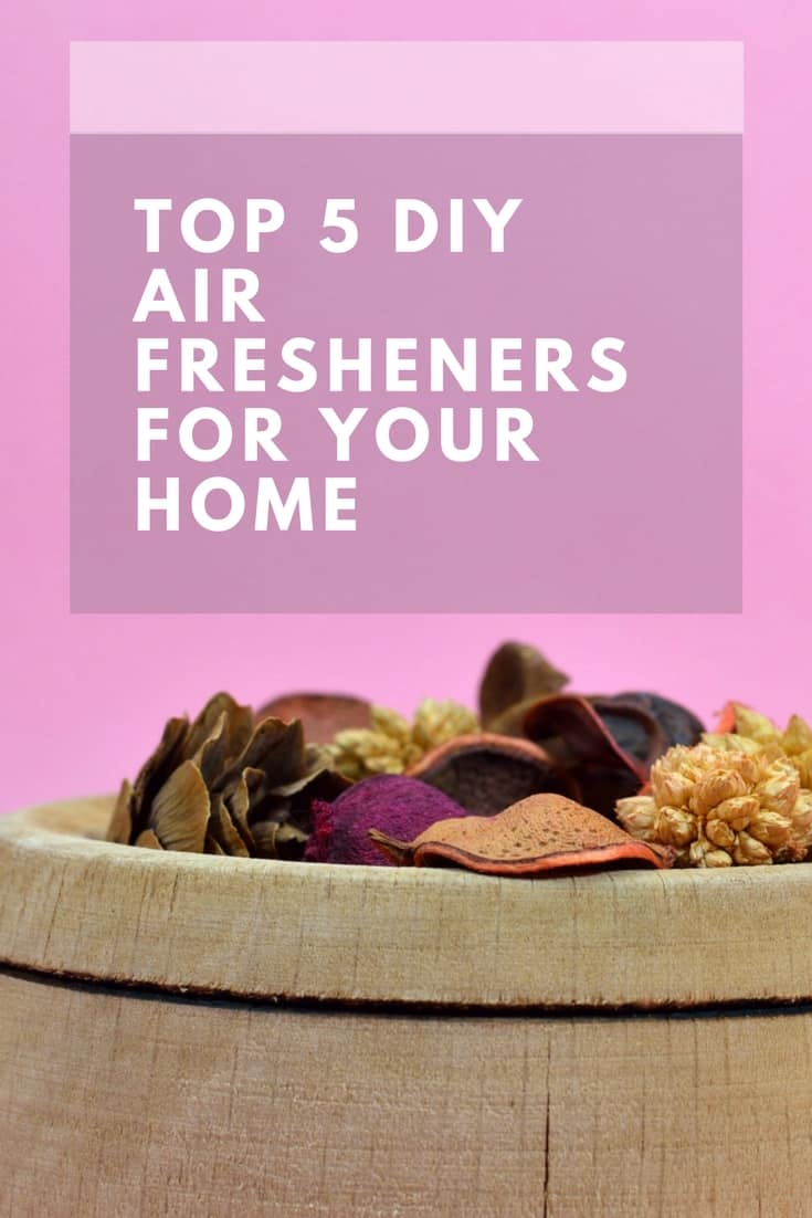 DIY Air Fresheners | Natural Air Fresheners | DIY Natural Air Fresheners | Homemade Air Fresheners | Air Purifiers | Natural Air Purifiers | Easy Natural Air Fresheners