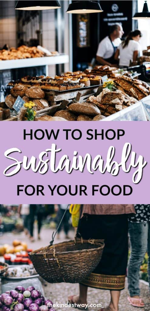 How to Shop Sustainably for Your Food | Sustainable Shopping | Sustainable Food | #sustainability #Food #shopping