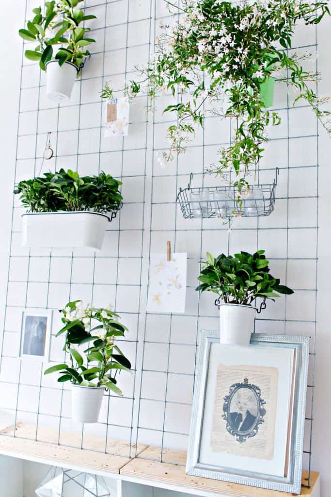 How to make a DIY Wall Planter.