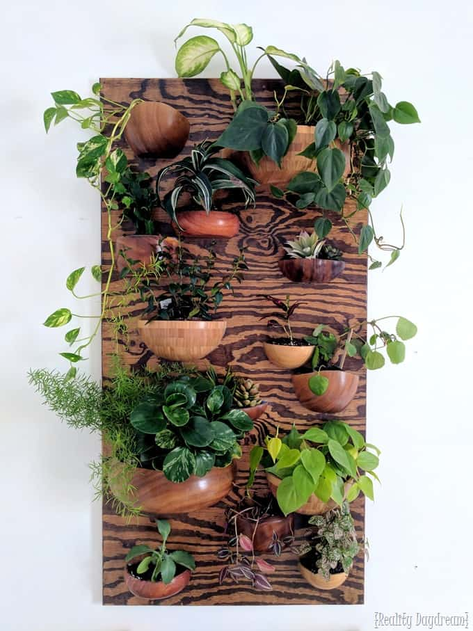 DIY Living Wall Planter