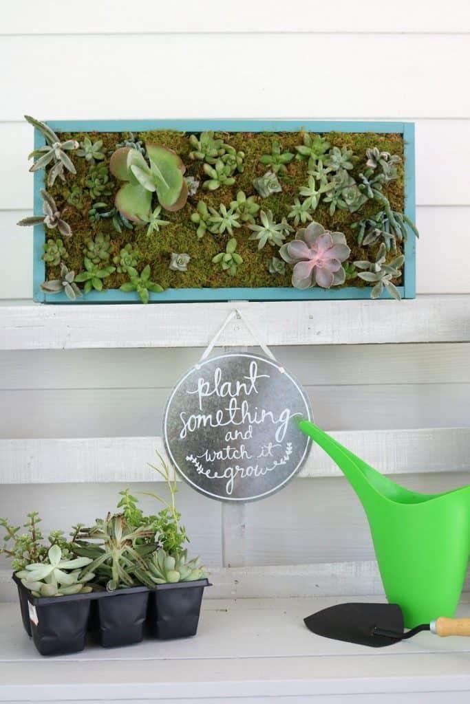 DIY Vertical Succulent Garden.