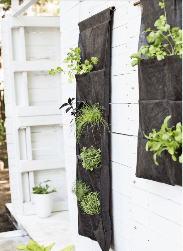 Vertical herb garden for small spaces DIY