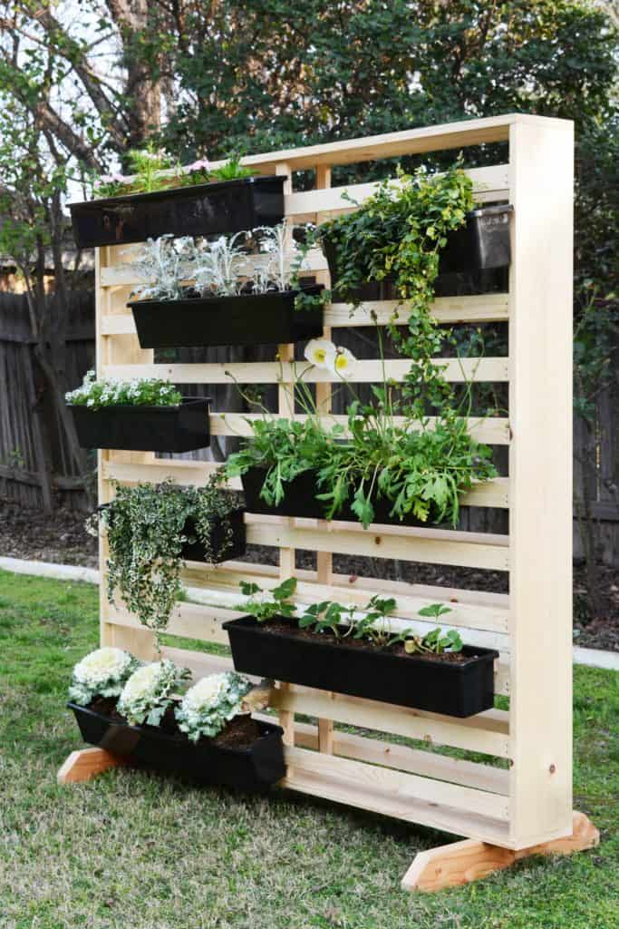 Diy Living Wall with moveable planters