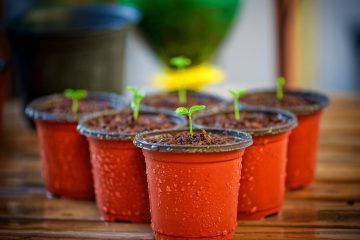 Creative ways to recycle plant pots around your home.