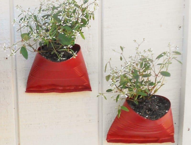 DIY Tin Can Planters