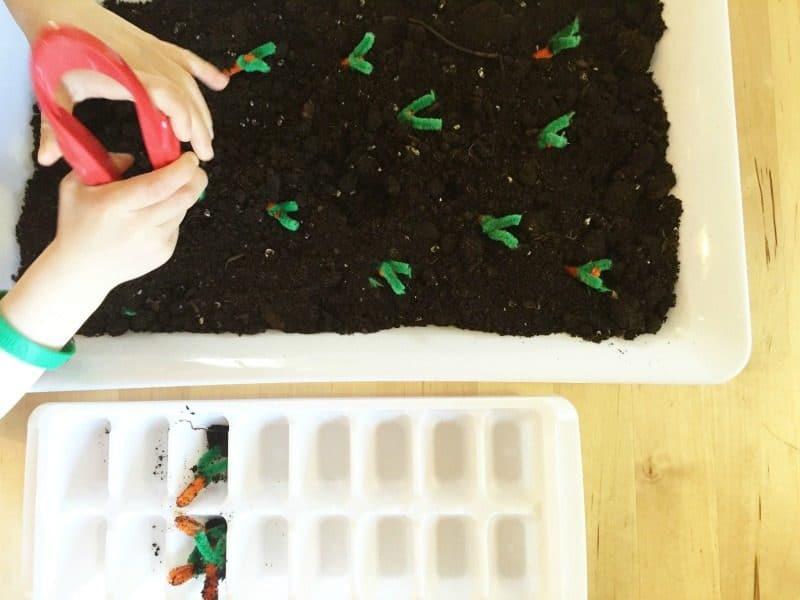 Garden sensory activities for preschoolers